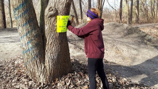 Lisa Harris puts up signs in the park displaying her displeasure with council's decision.