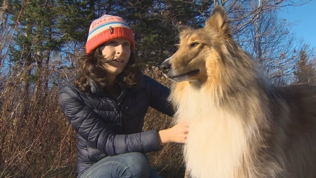 Laurenne Schiller now keeps her collie Cousteau on tick medication all year long. She says while dog owners in Nova Scotia are aware of the year-long risk of ticks, many in the general public are not.