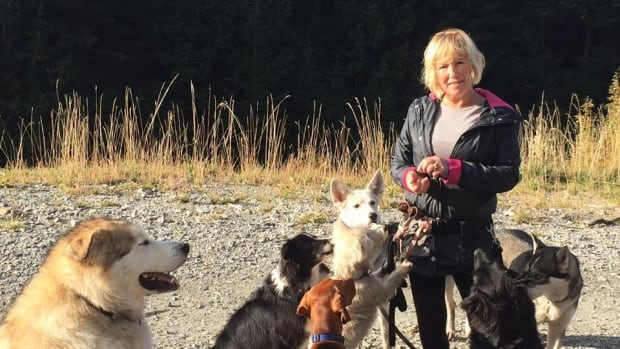Missing Coquitlam dog walker and 3 dogs found alive and well