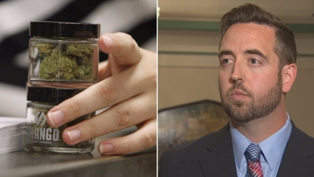 Newfoundland and Labrador Justice Minister Andrew Parsons released details around how marijuana legalization will work in the province on Thursday.