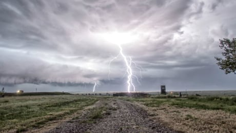 u of c researchers predict locations where lightning is likely to spark wildfires