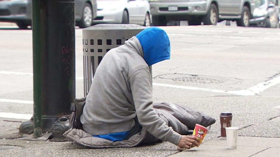 The federal government's new housing plan aims to cut chronic homelessness by 50 per cent in the next 10 years.