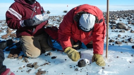Antarctic Search for Meteorites