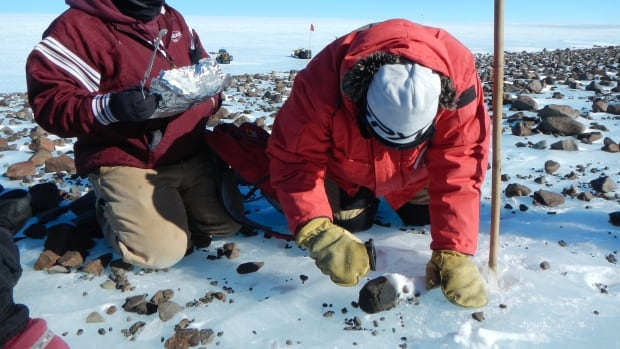 Members of the Antarctic Search for Meteorites (ANSMET) program collect a carbonaceous chondrite meteorite from a glacial moraine at the base of Mt. Ward, Antarctica. Since 1976, the program has brought back over 21,000 meteorite specimens.