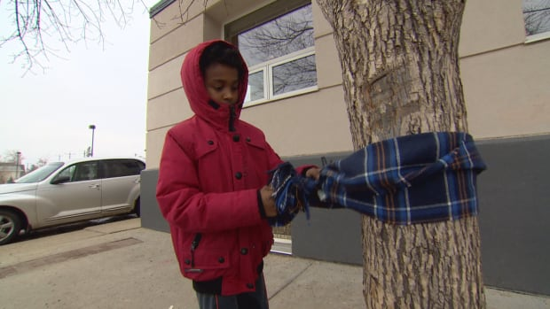 Shaquan Delorme, 7, ties a scarf to a tree near the Bissell Centre. Delorme goes with his grandmother and sister each year to put scarves and hats on trees downtown for the city's less fortunate.