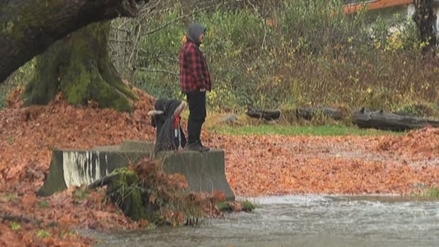 Residents near Port Alberni, B.C., watch the rising waters of the Somass River, which forced the evacuation of five homes on the Tseshaht First Nation on Sunday Nov. 26, 2017.