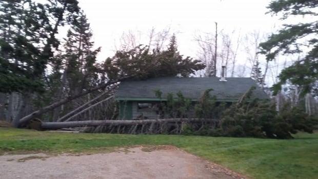 Big Wind Damage In Northern Cape Breton Nova Scotia