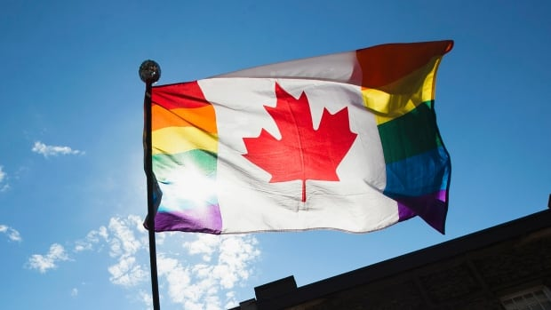A man holds a modified Canadian flag with Pride colours during the gay pride parade in Toronto, June 30, 2013.