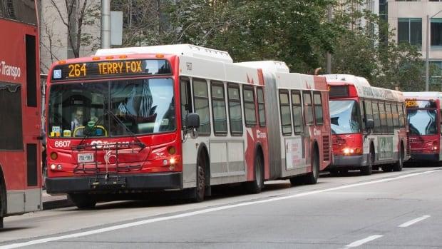 oc-transpo-buses.jpg