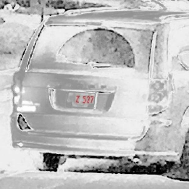 Blue Van license Plate