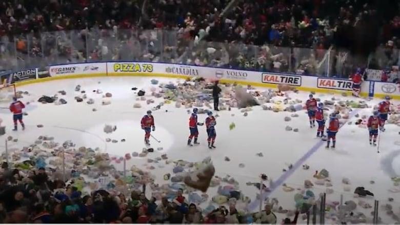 Hershey Bears break Teddy Bear Toss World Record