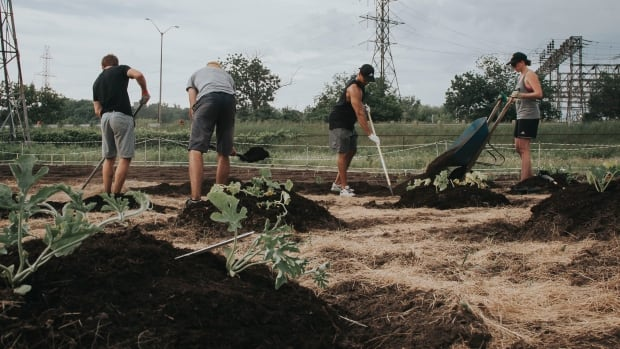 Urban Roots co-founder Graham Bracken says urban farming can help address hunger and unemployment in London.