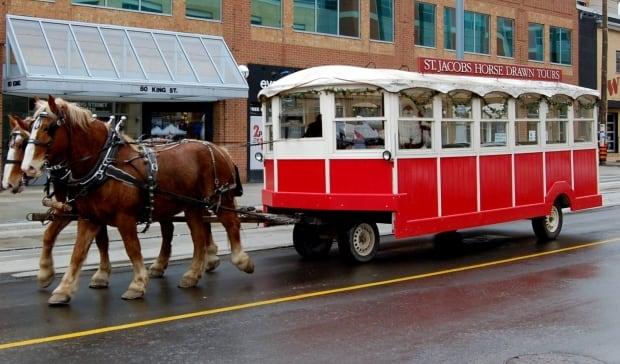 Horse-drawn trolley rides uptown Waterloo