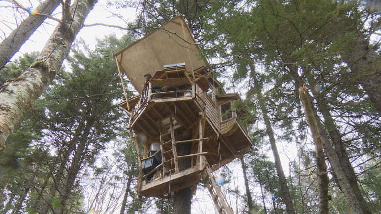The Sky S The Limit Man Builds Tree House Featuring