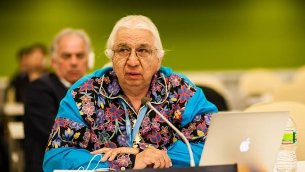 Kenneth Deer speaks on behalf of the Oneida Nation Council of Chiefs and the Indigenous World Association at the UN Permanent Forum on Indigenous Issues at the UN World Conference on Indigenous Peoples in 2014.