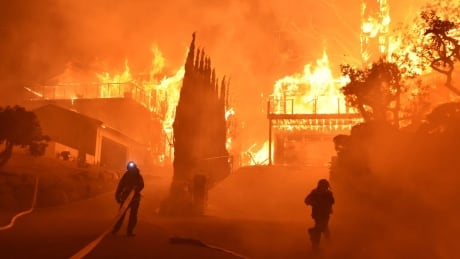 'It's a bleak situation': B.C. firefighters watch ominous southern California flames