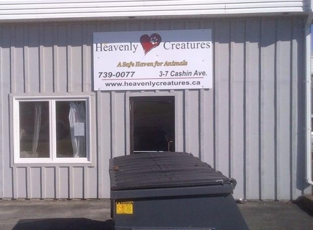 Heavenly Creatures building