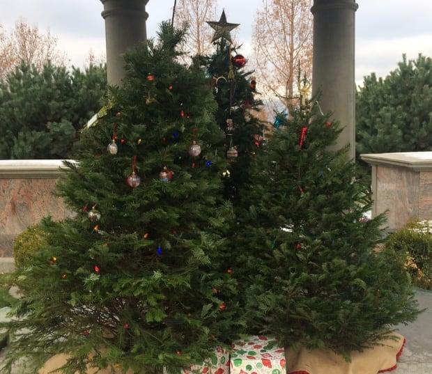Memory trees Kelowna Memorial Park Cemetery