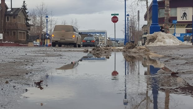 The snow is melting in Whitehorse this week, as temperatures soar well above freezing.