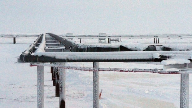 Pipelines built near a drilling site on Alaska's North Slope. ConocoPhillips in 2015 became the first to drill for oil in the National Petroleum Reserve-Alaska. This year, the U.S. Interior Department made its largest-ever lease offering within the reserve and received just 7 bids.