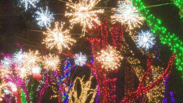 Bright Lights Windsor Festival Lights Up The Sky Friday