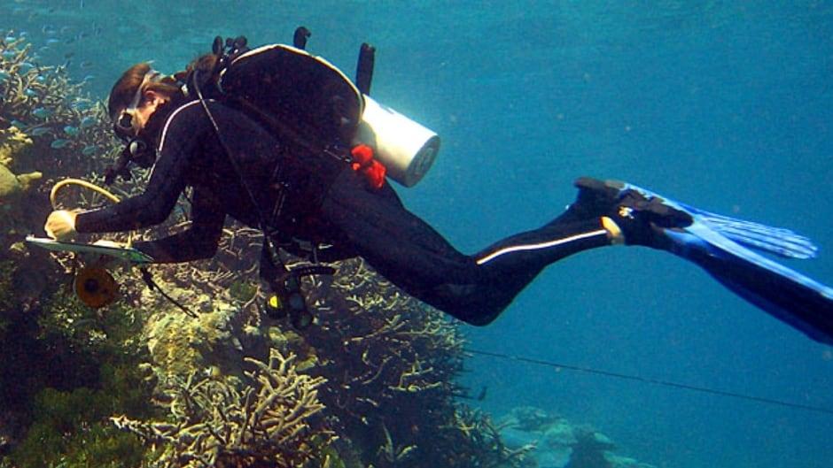 Dr. Stuart Sandin floating over coral reef.