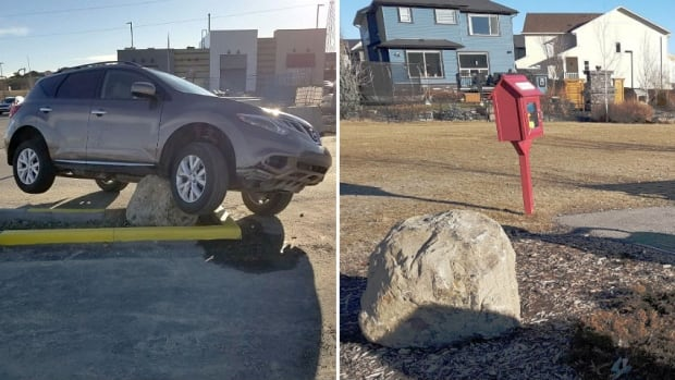 A large stone in a suburban Calgary parking lot that that became famous as the 'Sage Hill Rock' after drivers kept hitting it has found a new home in the northwest community, near a little free library in a prominent park.