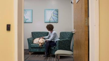 women shelter pets
