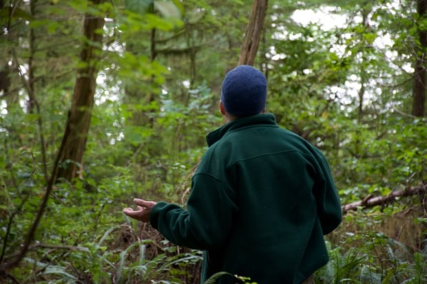 Will in the forest