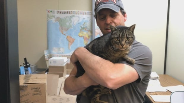 Tyson's owners are paying the cat's transport fee and will fly about 2,600 kilometres to meet him in Vancouver. He's shown here with Pelly Nitsulin MLA Stacey Hassard, getting used to the office of Yukon's official opposition.