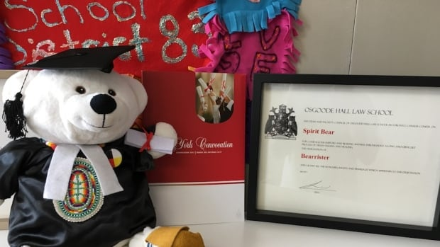 """""""Honorary Bearister"""" Spirit Bear poses with his degree from Osgoode Hall Law School."""