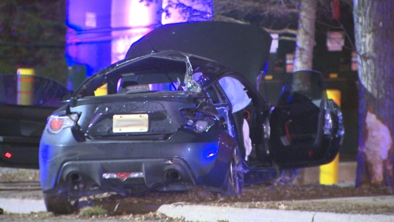 Man, 18, dead after vehicle slams into tree in Georgetown