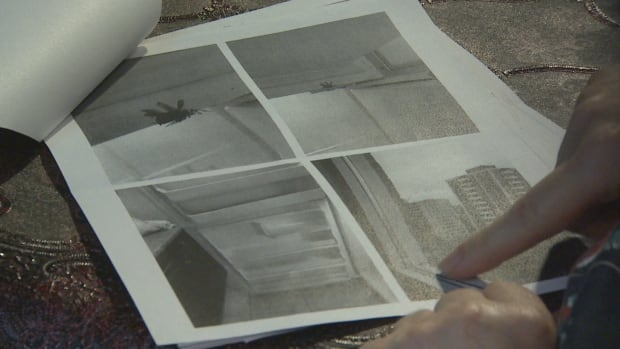 Farima Mohseni showed CBC Toronto photos she took of the unit at 91 Cosburn Ave. showing cockroaches in the fridge and a broken window she said her landlord promised to repair.