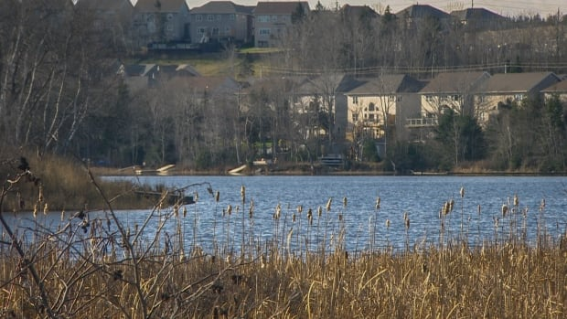 Some homeowners, especially those around lakes, have expanded their yards onto public land, say municipal councillors.