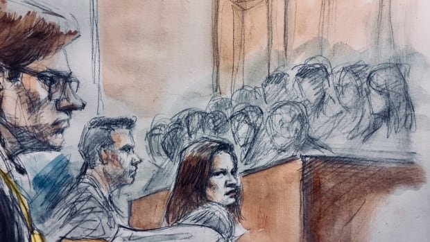 Dellen Millard, who has been acting as his own lawyer at the Laura Babcock murder trial in Toronto, addresses the jury during closing addresses, as Crown attorney Jill Cameron and co-accused Mark Smich look on.
