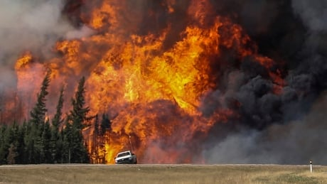 Hotter larger fires turning boreal forest into carbon source: Guelph