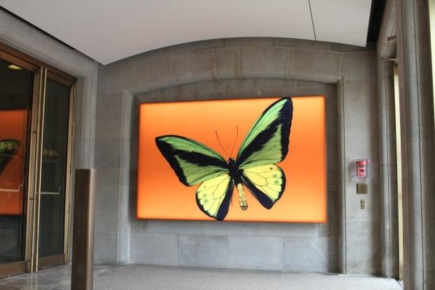 ROM entrance