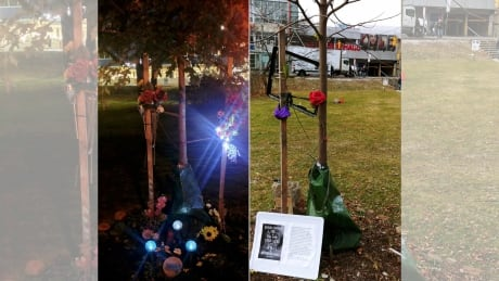 A 'disrespectful, hateful act': Destruction of memorial for accident victim devastates his family thumbnail