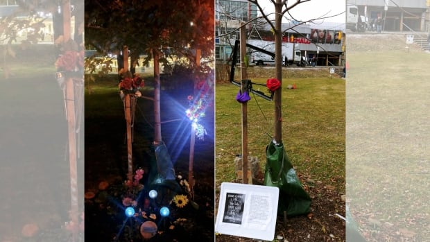A memorial for traffic accident victim Jamie Hayes at Dufferin Grove Park was found destroyed on Monday.