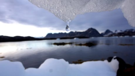 arctic report card permafrost thawing sea ice melting faster than before