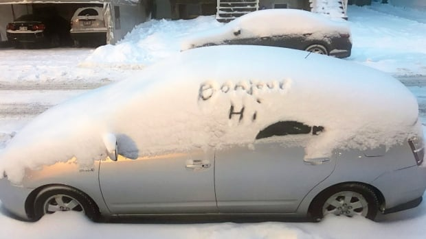 Facebook user Davison Davison Aimee shared this playful and political use of snow with us on our CBC Montreal page, along with the caption 'I made this.'