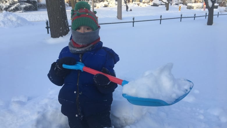 Snow Day: School buses cancelled as winter wallop continues