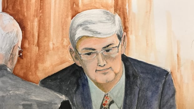Psychiatrist Dr. Stephen J. Hucker continues his testimony at the second-degree murder trial of Christopher Garnier.