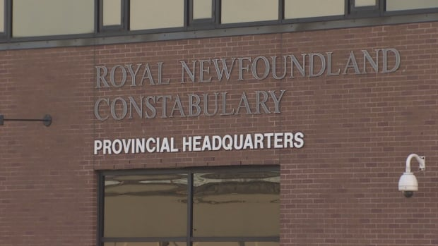 An allegation of domestic abuse has been made against longtime RNC officer stationed in St. John's.