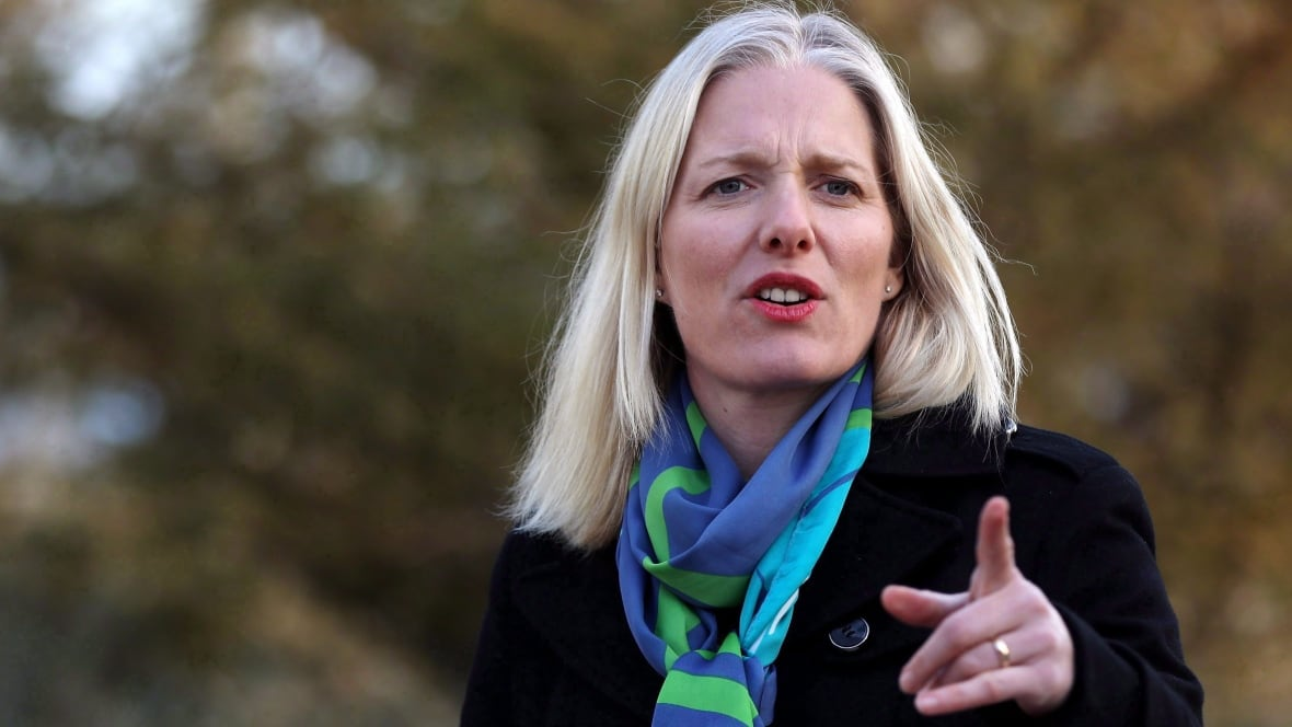 Provinces have until the end of 2018 to submit carbon price plans: McKenna