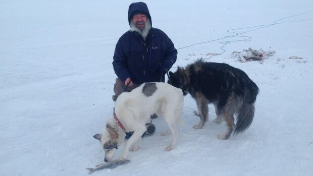 Dan Cassan and his two dogs have been in Inuvik, N.W.T., since Oct. 27. Cassan says he's the first tourist to drive across the highway.