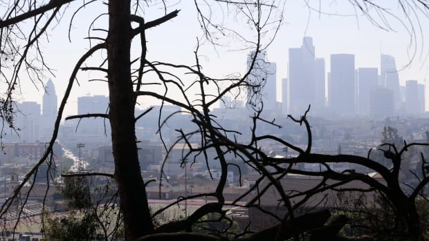 Los Angeles skyline is seen through burned trees. A fire is now approaching Montecito, a celebrity enclave.