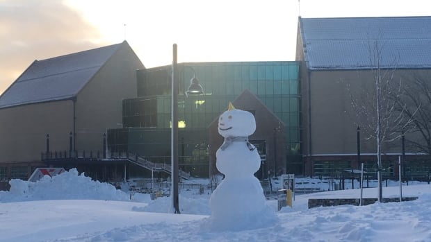 With about 30 centimetres of snow in St. John's, someone took advantage of the white stuff to make an awesome snowman in front of The Rooms.