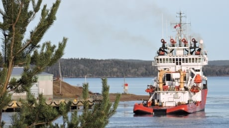 Botwood mayor takes aim at Gerry Byrne, says wood chip operation will go ahead anyway thumbnail