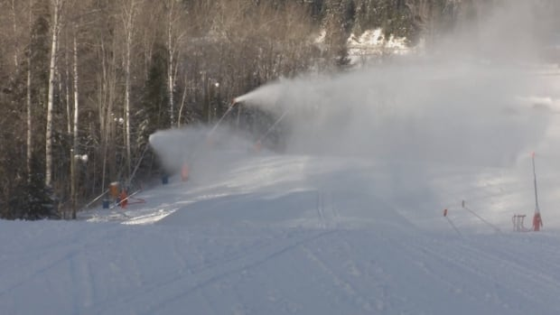 The Sugarloaf Provincial Park ski centre delayed this weekend's planned opening because it didn't have enough snow.